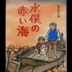 自著「水俣の赤い海」 原田正純