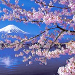 昭和の日をお祝いする集い