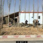 中国・ウイグル強制収容所2